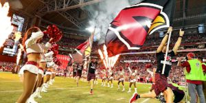 Arizona-Cardinals-Spotlight.jpg